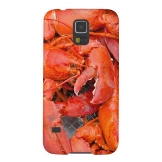 USA, Massachusetts, Martha's Vineyard Galaxy S5 Cover