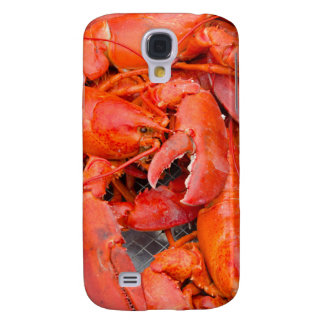 USA, Massachusetts, Martha's Vineyard Samsung S4 Case