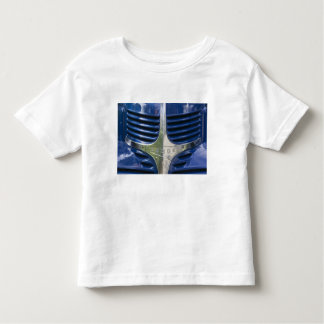 USA, MASSACHUSETTS, Martha's Vineyard: West 2 Toddler T-shirt