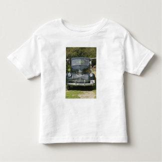USA, MASSACHUSETTS, Martha's Vineyard: West 4 Toddler T-shirt