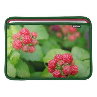 USA, Massachusetts, Nantucket. Ripe Raspberries MacBook Sleeve