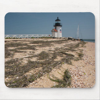 USA, Massachusetts, Nantucket. Shell Mouse Pad