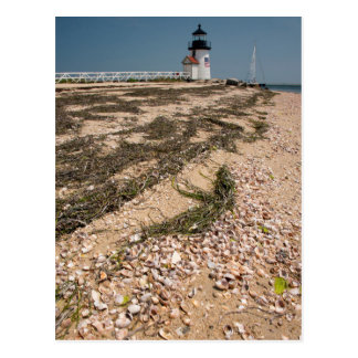 USA, Massachusetts, Nantucket. Shell Postcard