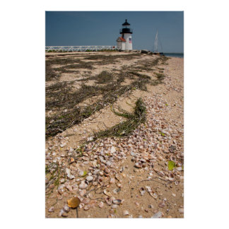 USA, Massachusetts, Nantucket. Shell Print