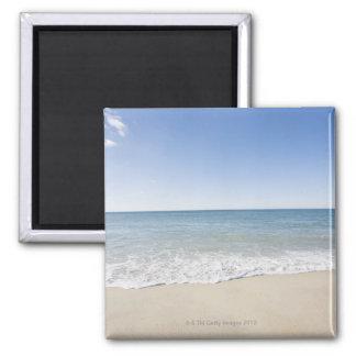 USA, Massachusetts, Waves at sandy beach 2 Magnet