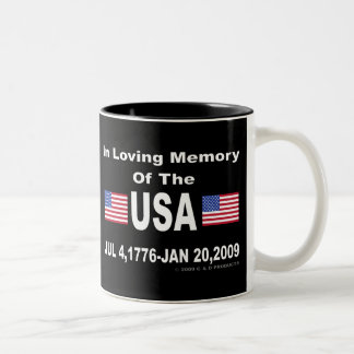 USA Memory 15oz Mug