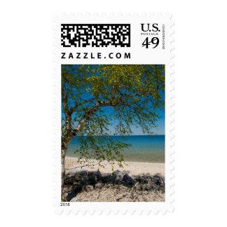 USA, Michigan. Mackinac Island Rocky Beach Stamps
