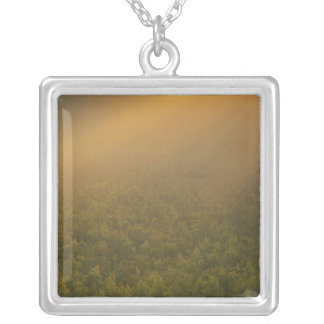 USA, Michigan, Meadow of goldenrod plants Silver Plated Necklace