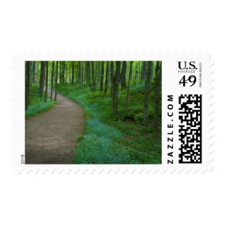 USA, Michigan. Miner's Falls Trail Postage Stamp