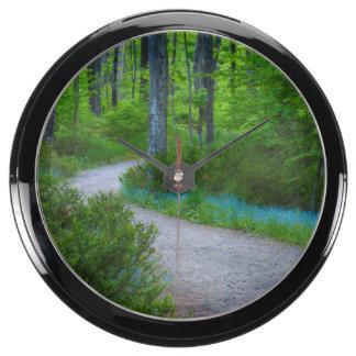 USA, Michigan. Path Thru The Woods Aquavista Clock