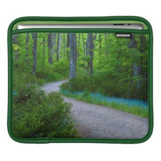 USA, Michigan. Path Thru The Woods Sleeve For iPads