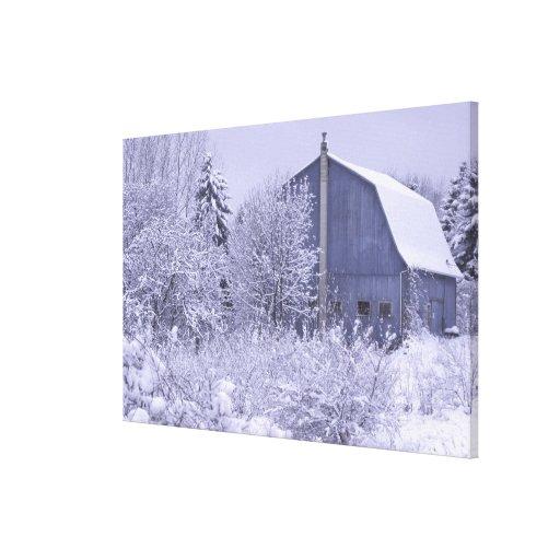USA, Michigan, Rochester Hills. Snowy blue Canvas Prints
