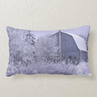 USA, Michigan, Rochester Hills. Snowy blue Lumbar Pillow