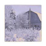 USA, Michigan, Rochester Hills. Snowy blue Maple Wood Coaster
