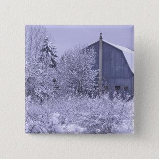 USA, Michigan, Rochester Hills. Snowy blue Pinback Button