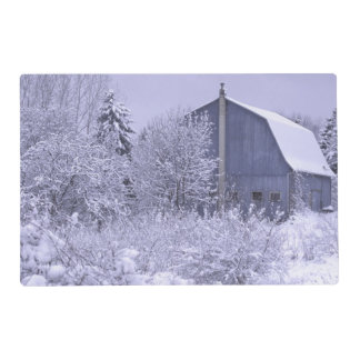 USA, Michigan, Rochester Hills. Snowy blue Placemat