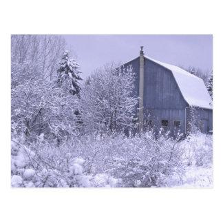 USA, Michigan, Rochester Hills. Snowy blue Postcard