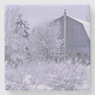 USA, Michigan, Rochester Hills. Snowy blue Stone Coaster