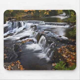 USA, Michigan, Upper Peninsula. Bond Falls and Mouse Pad