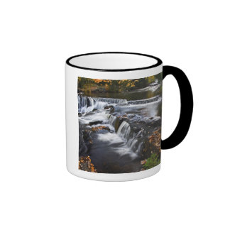 USA, Michigan, Upper Peninsula. Bond Falls and Mug