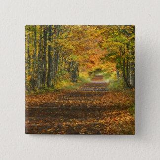 USA, Michigan, Upper Peninsula. Roadway into Pinback Button
