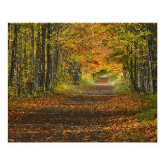 USA, Michigan, Upper Peninsula. Roadway into Poster