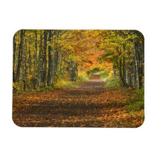 USA, Michigan, Upper Peninsula. Roadway into Rectangular Photo Magnet