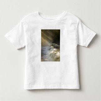 USA, Michigan, Upper Peninsula. Sunbeams on Toddler T-shirt