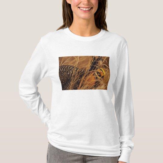 USA, Minnesota, Pembina Trail Preserve. T-Shirt