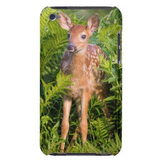 USA, Minnesota, Sandstone, Minnesota Wildlife 10 iPod Touch Covers