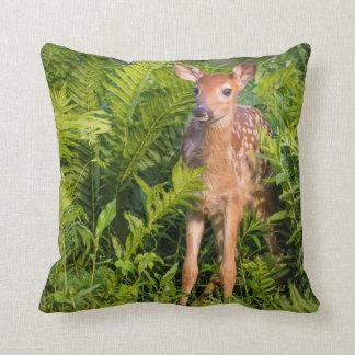 USA, Minnesota, Sandstone, Minnesota Wildlife 10 Throw Pillow