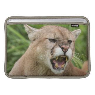 USA, Minnesota, Sandstone, Minnesota Wildlife 12 Sleeves For MacBook Air