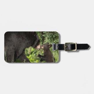 USA, Minnesota, Sandstone, Minnesota Wildlife 13 Luggage Tag