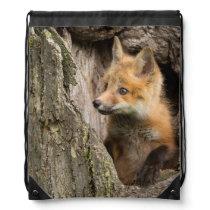 USA, Minnesota, Sandstone, Minnesota Wildlife 14 Drawstring Backpack