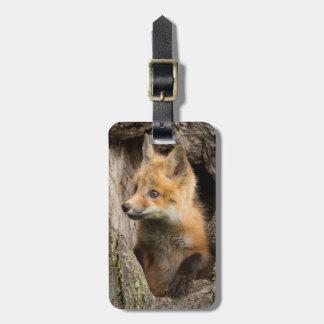 USA, Minnesota, Sandstone, Minnesota Wildlife 14 Luggage Tag