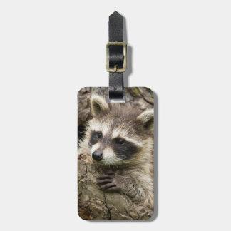 USA, Minnesota, Sandstone, Minnesota Wildlife 16 Bag Tag