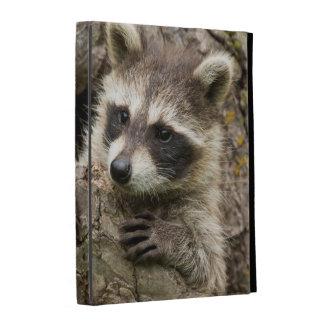 USA, Minnesota, Sandstone, Minnesota Wildlife 16 iPad Cases
