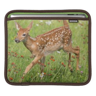 USA, Minnesota, Sandstone, Minnesota Wildlife 20 Sleeve For iPads