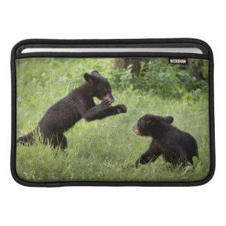 USA, Minnesota, Sandstone, Minnesota Wildlife 22 Sleeves For MacBook Air