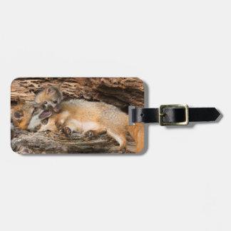 USA, Minnesota, Sandstone, Minnesota Wildlife 23 Bag Tag