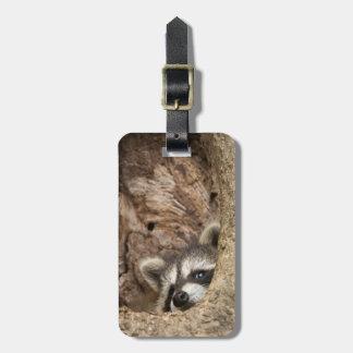 USA, Minnesota, Sandstone, Minnesota Wildlife 3 Luggage Tag