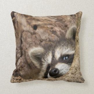 USA, Minnesota, Sandstone, Minnesota Wildlife 3 Throw Pillow