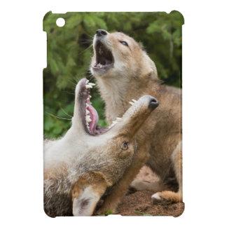 USA, Minnesota, Sandstone, Minnesota Wildlife 6 iPad Mini Case