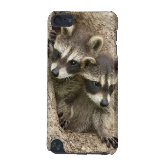 USA, Minnesota, Sandstone, Minnesota Wildlife 7 iPod Touch 5G Cover