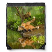 USA, Minnesota, Sandstone, Minnesota Wildlife 7 Drawstring Backpack