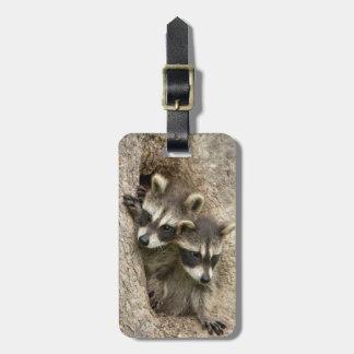 USA, Minnesota, Sandstone, Minnesota Wildlife 7 Luggage Tag