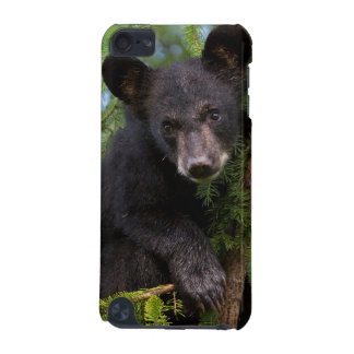 USA, Minnesota, Sandstone, Minnesota Wildlife 8 iPod Touch (5th Generation) Covers