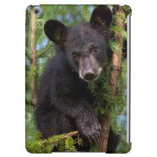 USA, Minnesota, Sandstone, Minnesota Wildlife 8 Case For iPad Air