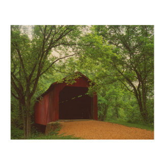 USA, Missouri, Jefferson County, Sandy Creek Wood Print