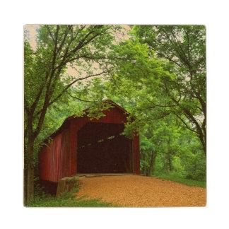 USA, Missouri, Jefferson County, Sandy Creek Wooden Coaster